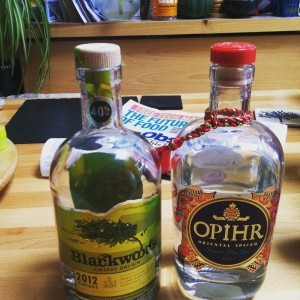 Our afternoon in one picture: Blackwoods and Opihr gin