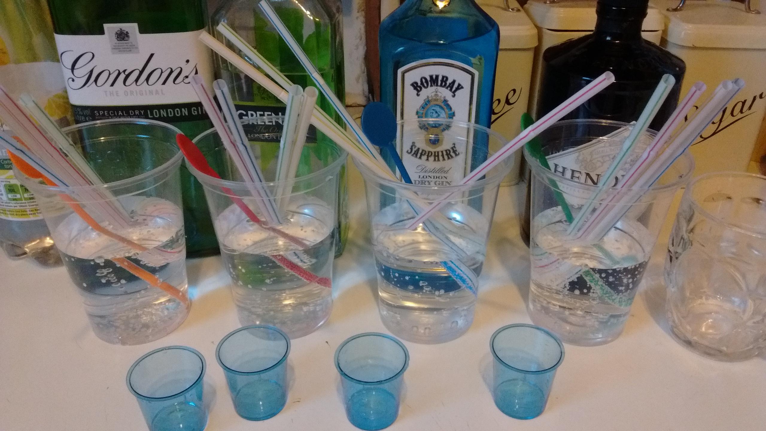 gordons dry gin test